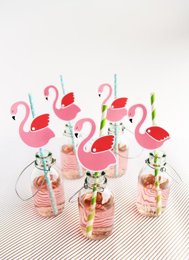 festa flamingo 14