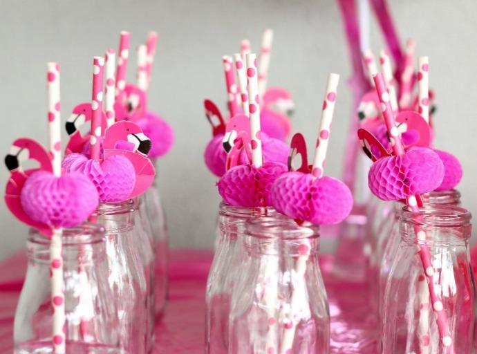 festa flamingo 15