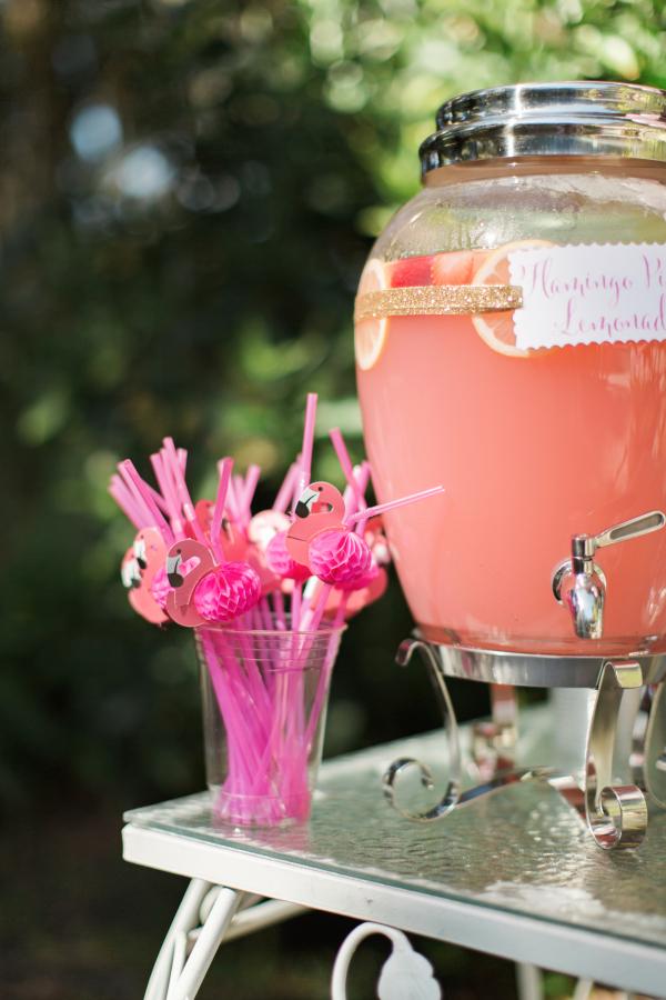 festa flamingo 6