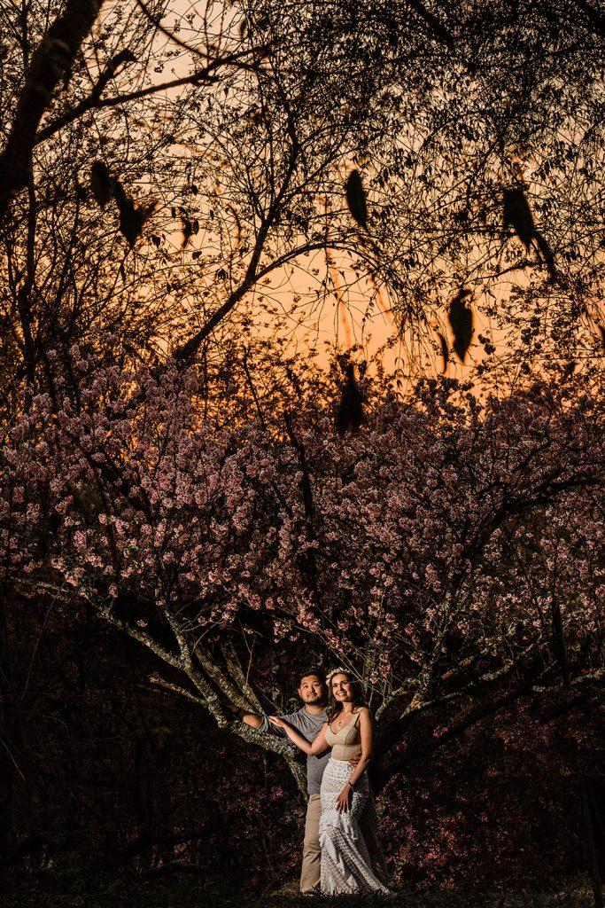 pre-wedding-ar-livre-8862